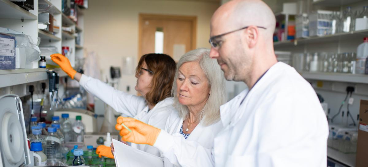 Professor Dame Kay Davies in her laboratory at the University of Oxford working with two researchers